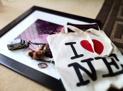 NE Expo Snag Bag