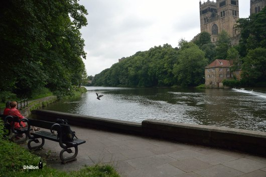 Durham Cathedral Riverbank