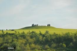 Penshaw Viewing Hill