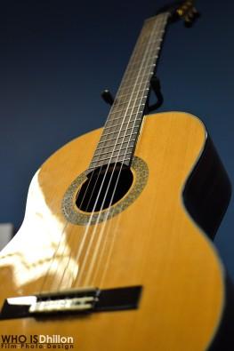 Acoustic Guita