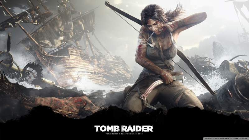 Tomb Raider 2013 Survivor